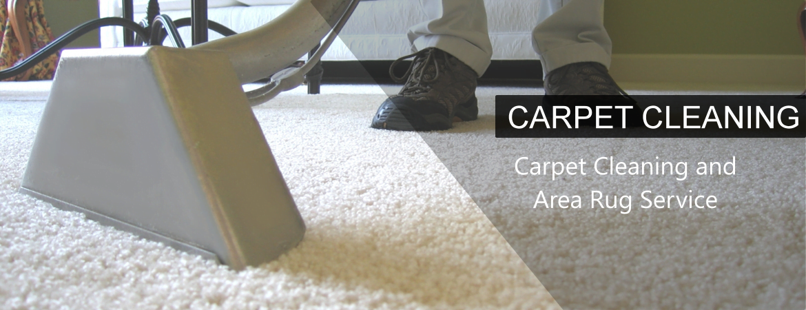 Carpet Upholstery Area Rug Cleaning